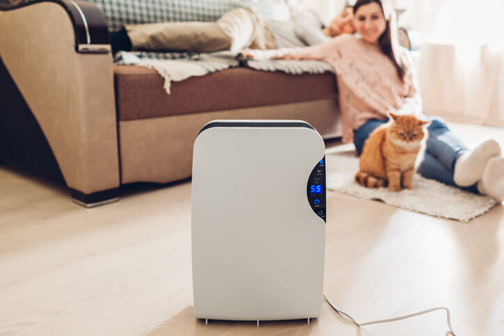 How To Improve Indoor Air Quality In Five Easy Steps