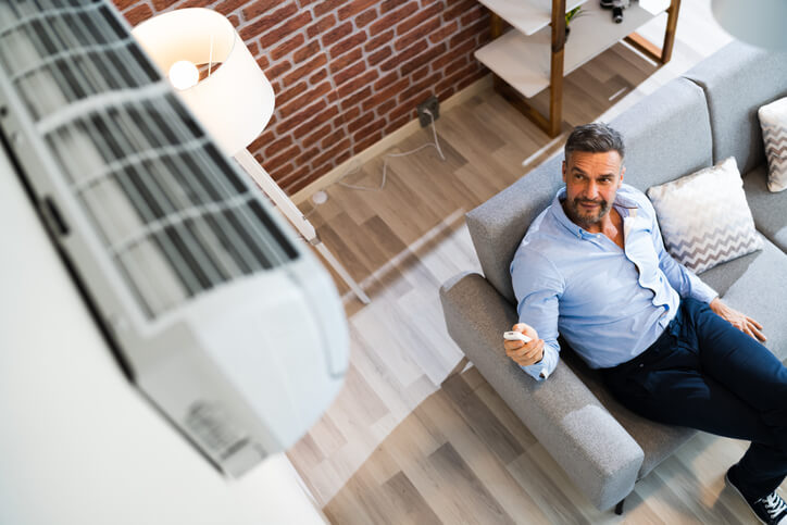 Should You Choose A Room Or Whole House Air Purifier?