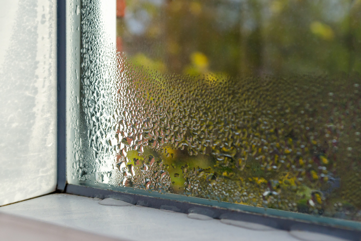 Lower Your Home's Indoor Humidity With These Tips